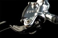 formula r1 racing